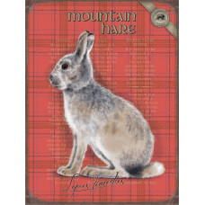 Mountain Hare -  Small (150 x 200mm) Metal Sign -